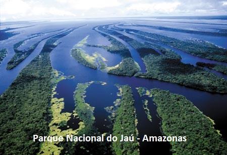 Visualizar v. 8 n. 13 (2020): PN do Jaú - Amazonas